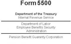 Form 5500 - COBRA Participants